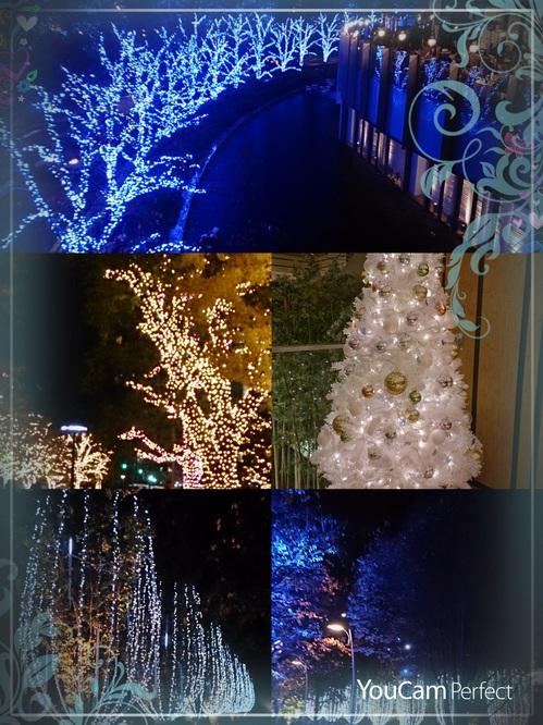 2014-12-09-21-33-26-587.jpg